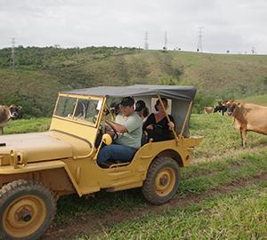 Jeep-til-forsiden